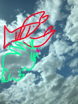 Drawing pictures in the clouds!